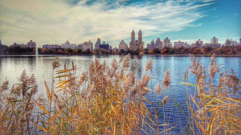 A stunning autumn view across the Jacqueline Kennedy Onassis Reservoir royalty free stock photo