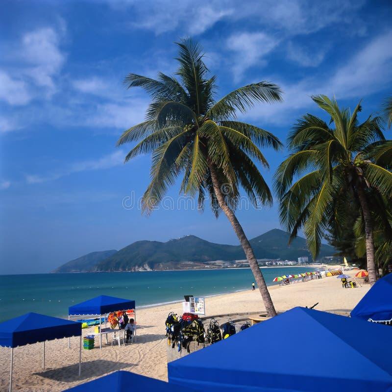 Stunning Beach Scenery Stock Photos