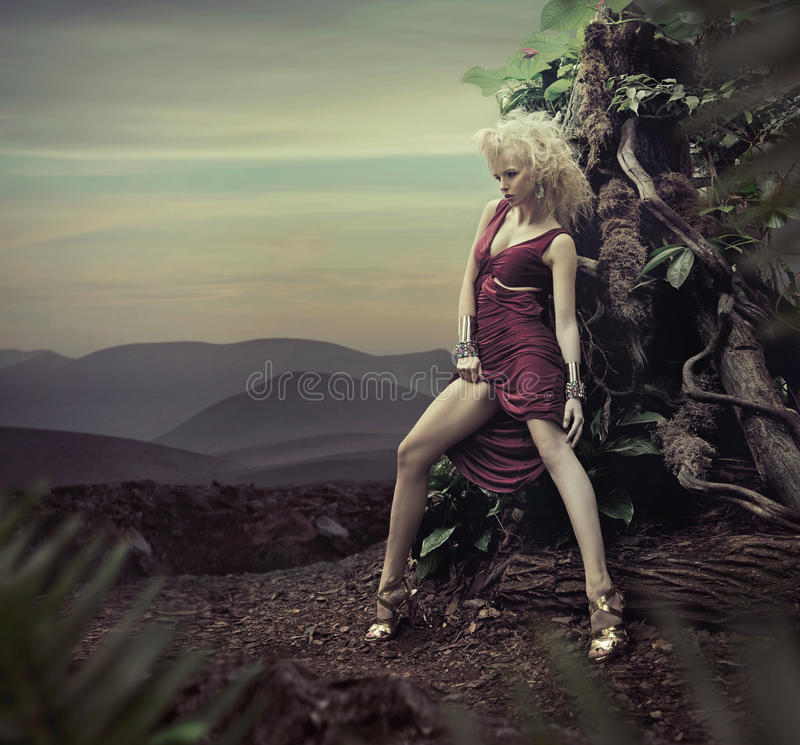 Free Stunning Blond Lady Posing In The Evening Stock Photo - 26828020
