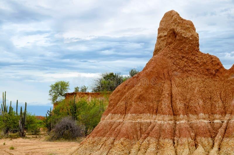 Stunning bright orange sandstone formation and cactus stock photo