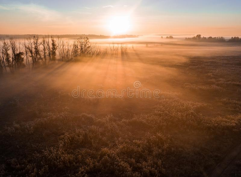 Stunning dawn light. Long shadows from the trees. Atmospheric beautiful dawn. Aerial drone photo. Amazing golden sun royalty free stock photos