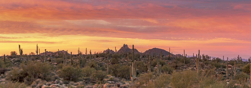 Stunning & Colorful  Desert Sunrise in Scottsdale, Arizona royalty free stock image