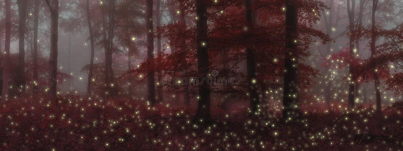 Stunning fantasy style landscape image of fireflies in night tim royalty free illustration
