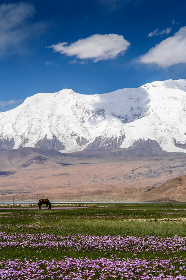 Stunning Karakorum krajobraz zdjęcie stock