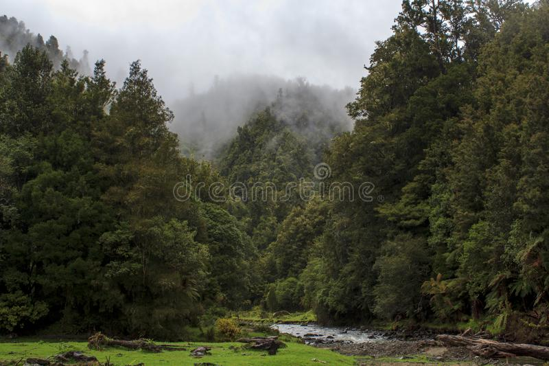 Stunning landscape in North island of New Zealand stock photography