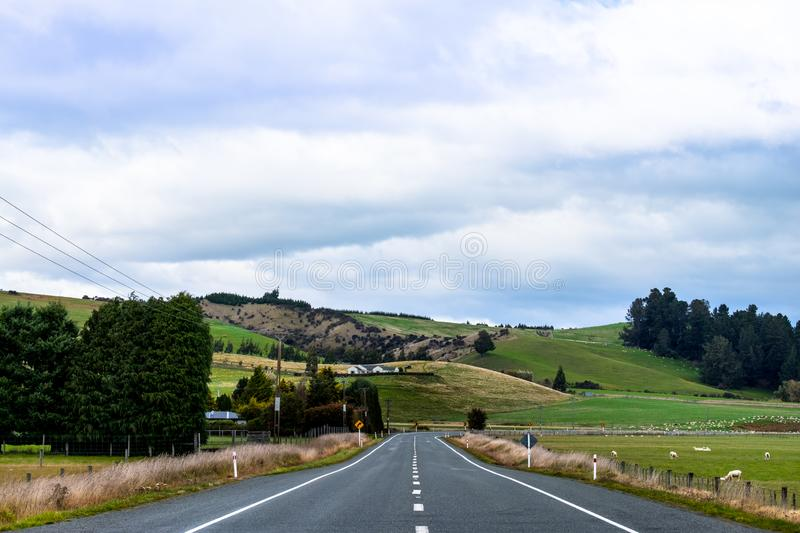 A stunning landscape scene of the agriculture in a rural area in New Zealand with green grassland beside the road in the cloudy royalty free stock images