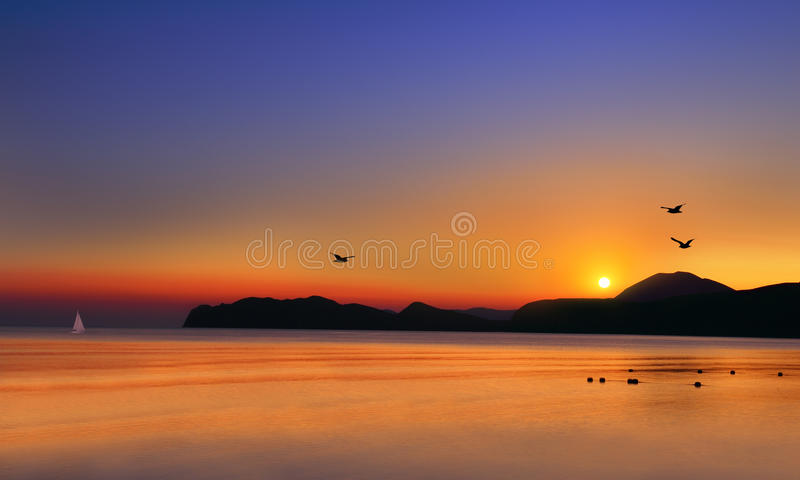 Download Dawn at the sea stock image. Image of seagulls, coastline - 30147037