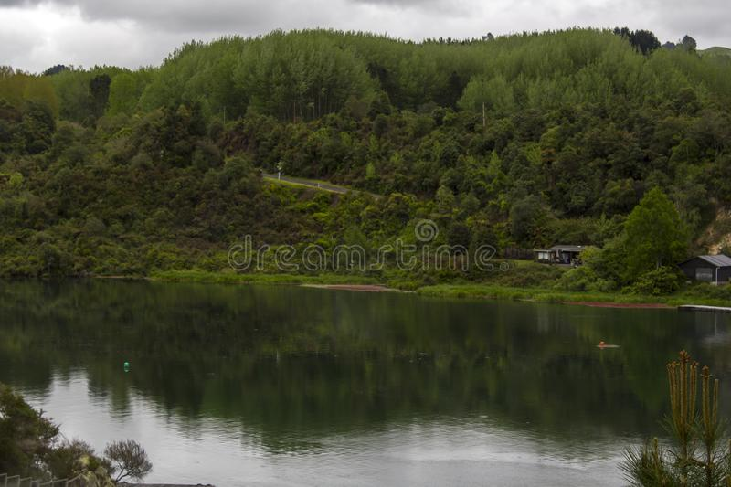 Stunning landscape, River and florest. Stunning New Zealand landscape, River and florest royalty free stock photo