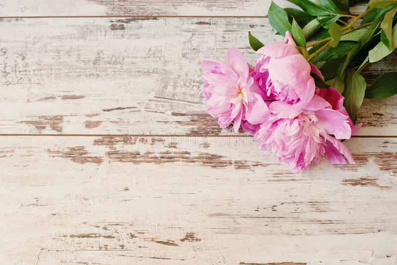 Stunning pink peonies on white light rustic wooden background. Copy space, floral frame. Vintage, haze looking. Wedding card stock image