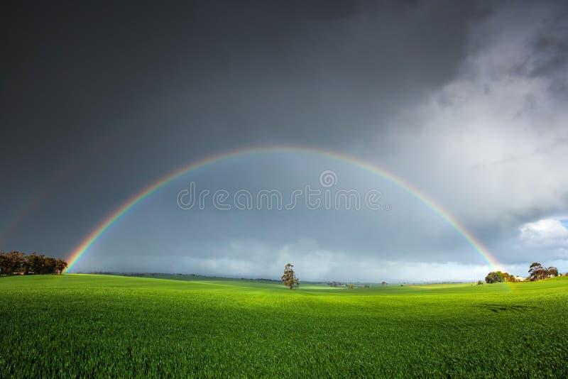 Stunning Rainbow Field. Stunning rainbow over a field in the Clare Valley stock photo