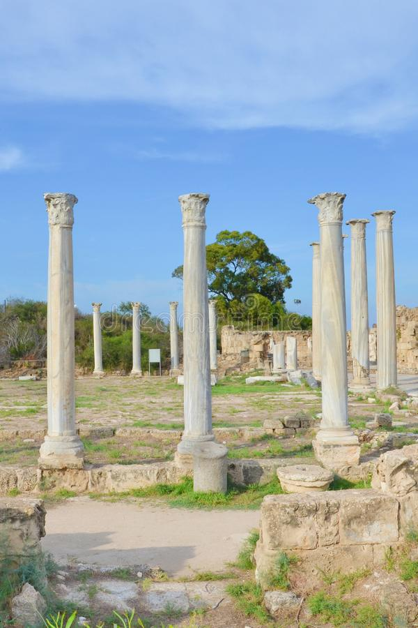 Stunning ruins of ancient Greek city Salamis located in todays Northern Cyprus. The white pillars were part of Salamis Gymnasium. Captured on vertical picture stock images