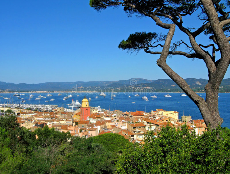 Stunning St. Tropez. Panorama of St. Tropez, France, with cypress from citadel royalty free stock photo
