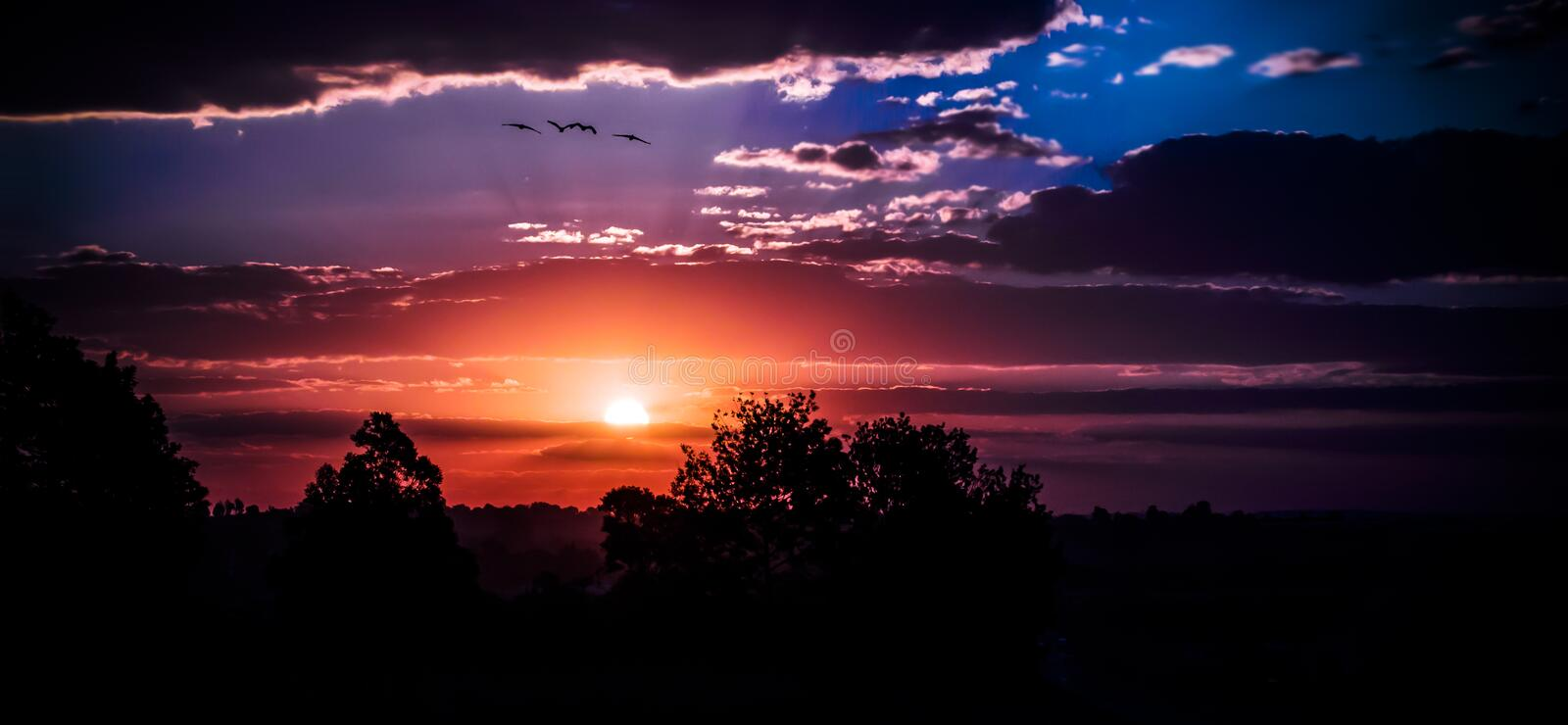 Stunning sunset. A stunning sunset with the birds flying into the horizon royalty free stock photos