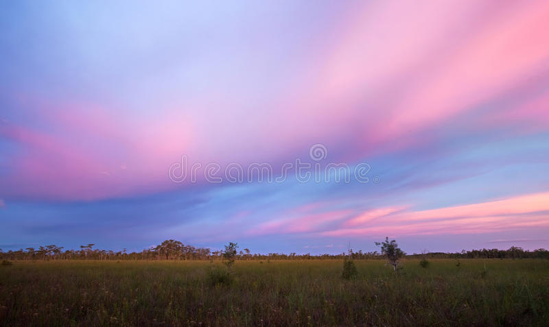 Stunning Sunset over Florida Sawgrass Prairie royalty free stock image
