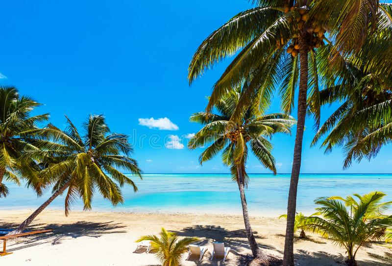 Stunning tropical Aitutaki island with palm trees, white sand, turquoise ocean water and blue sky at Cook Islands, South Pacific. royalty free stock images