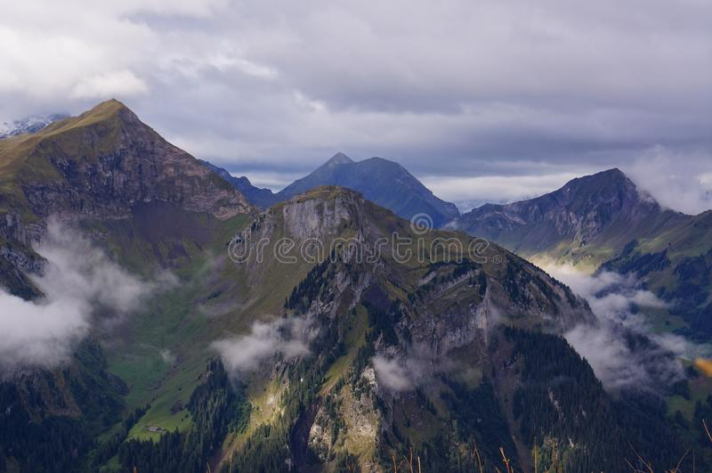 Stunning view of alpine forest, lake Brienz, mountain range and mist in Schynige Platte, Switzerland. Part of the royalty free stock image