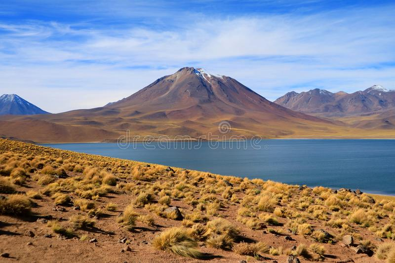 Stunning view of deep blue color Miscanti lake with Cerro Miscanti mountain in background, Northern Chile royalty free stock image