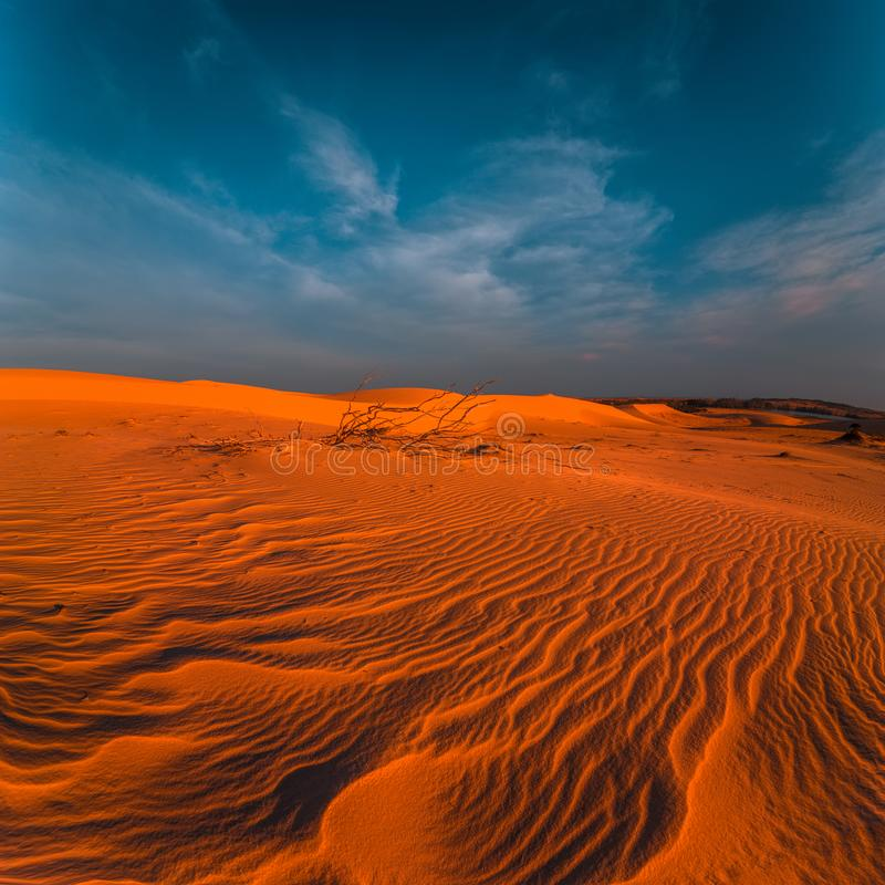 Stunning view of lonely sand dunes royalty free stock photo