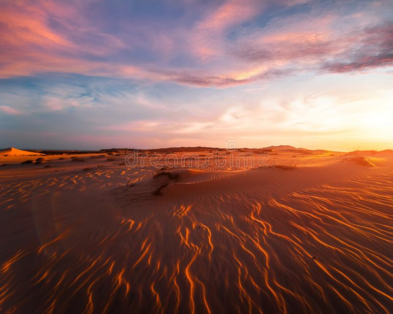 Stunning view of lonely sand dunes stock image