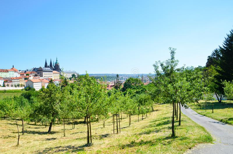 Stunning view of Prague, Czech Republic photographed from the Petrin hill with adjacent park. The dominant of the Czech capital is royalty free stock photos