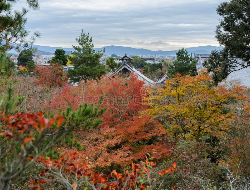 Aerial view of Tenryuji temple during autumn season in Kyoto, J stock photography