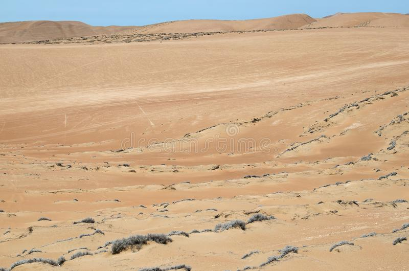 Stunning view to the dunes of the desert under blue sky stock photography