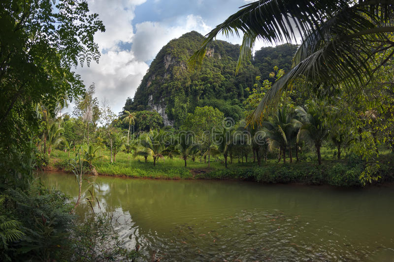 Stunning view to the karst formation hills, river with fish and royalty free stock photos