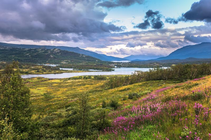 Stunning wild valley landscape in the Oppland county of Norway royalty free stock images