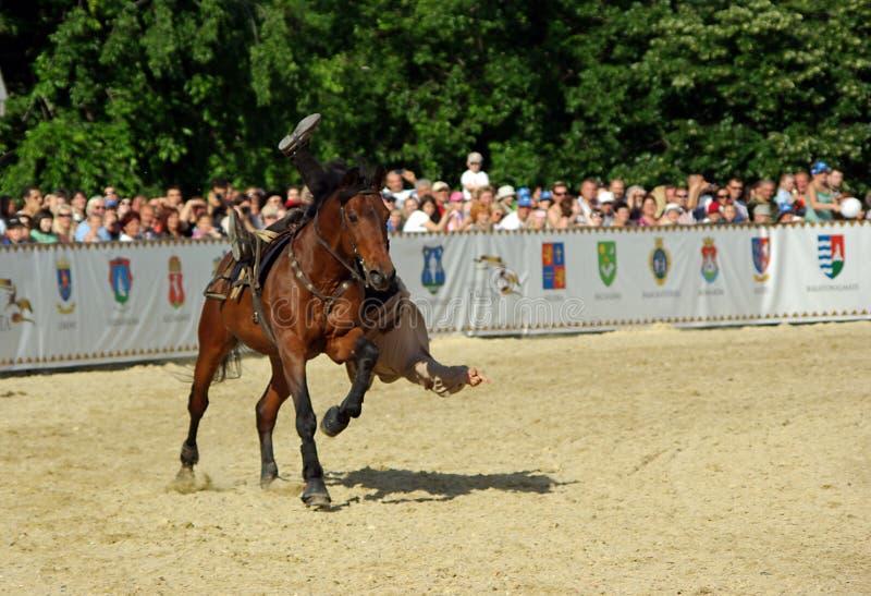 stuntman лошади стоковая фотография
