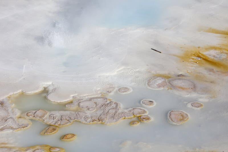 Stuoia batterica al bacino della porcellana, Yellowstone immagini stock libere da diritti