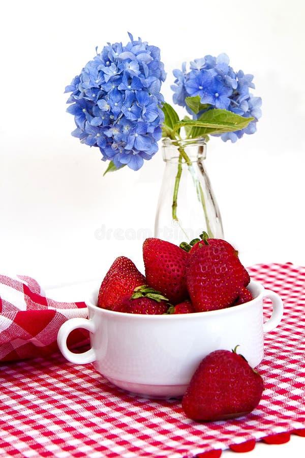 Stuoia rossa e bianca del percalle, fragole fotografia stock libera da diritti