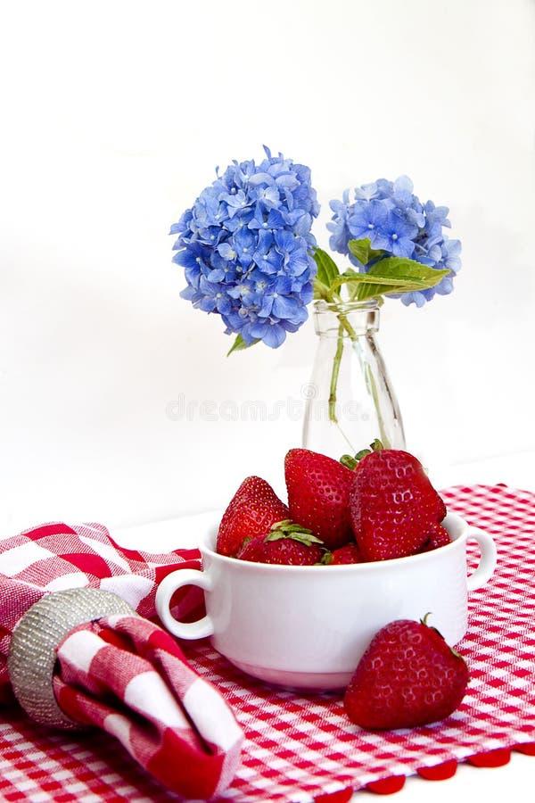 Stuoia rossa e bianca del percalle, fragole immagine stock libera da diritti