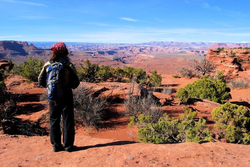 Stupéfaction de Canyonlands photos libres de droits