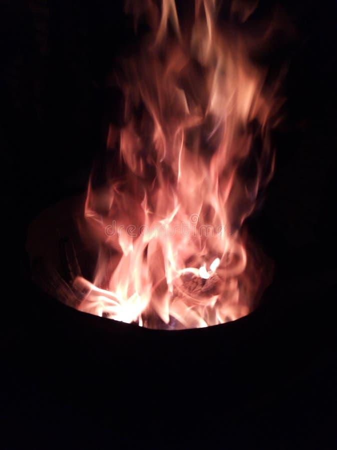 Stupéfier gentil du beau feu bon photographie stock libre de droits