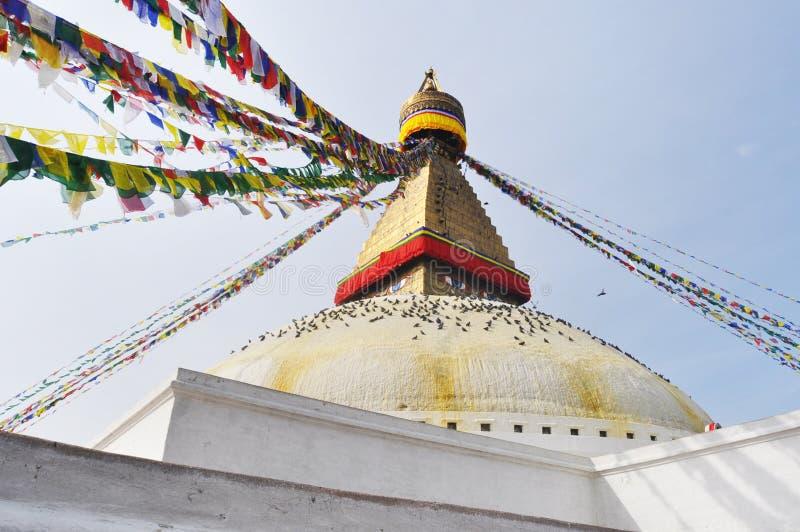 Stupa加德满都尼泊尔 免版税图库摄影