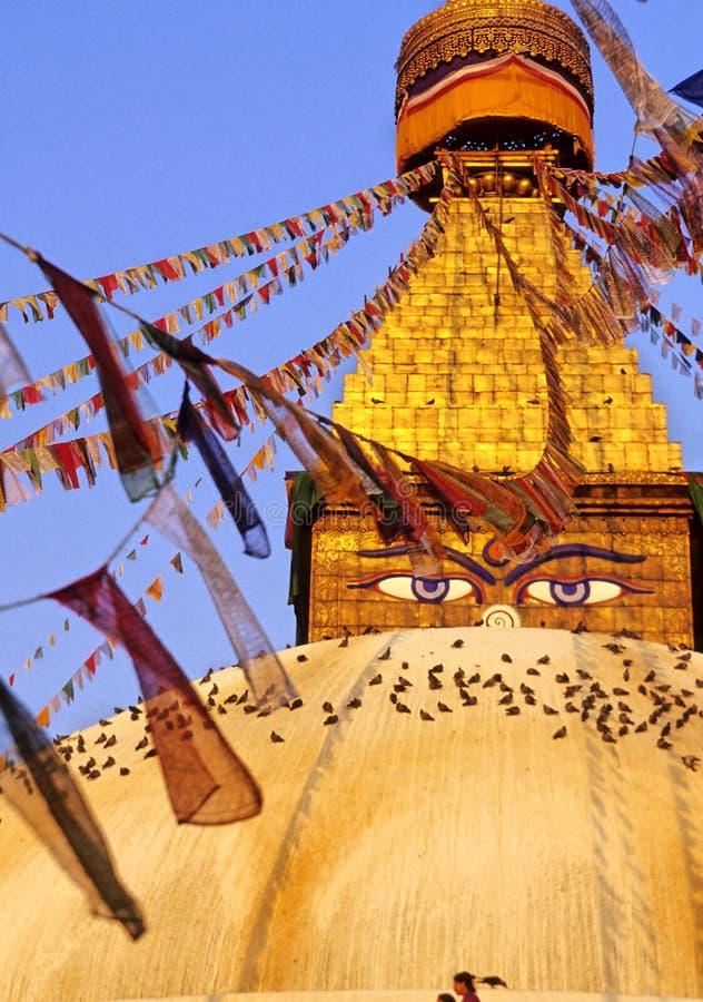 stupa bouddhiste du Népal photographie stock libre de droits