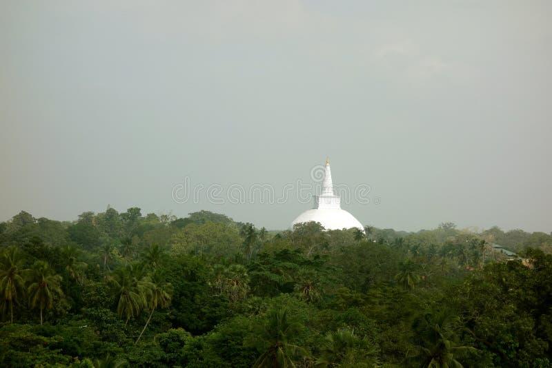 Stupa buddista bianco che guarda fuori sul baldacchino della giungla fotografia stock
