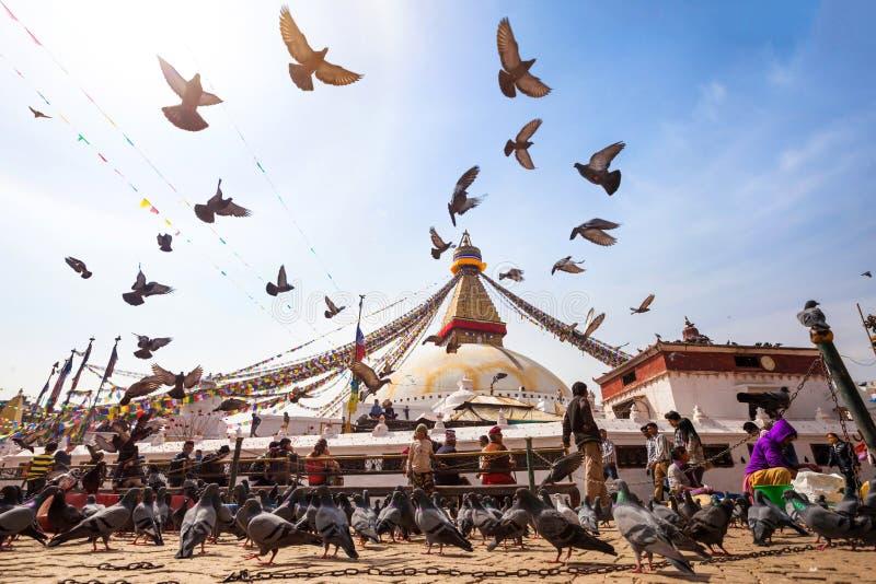 Stupa buddista a Kathmandu, Nepal fotografia stock libera da diritti