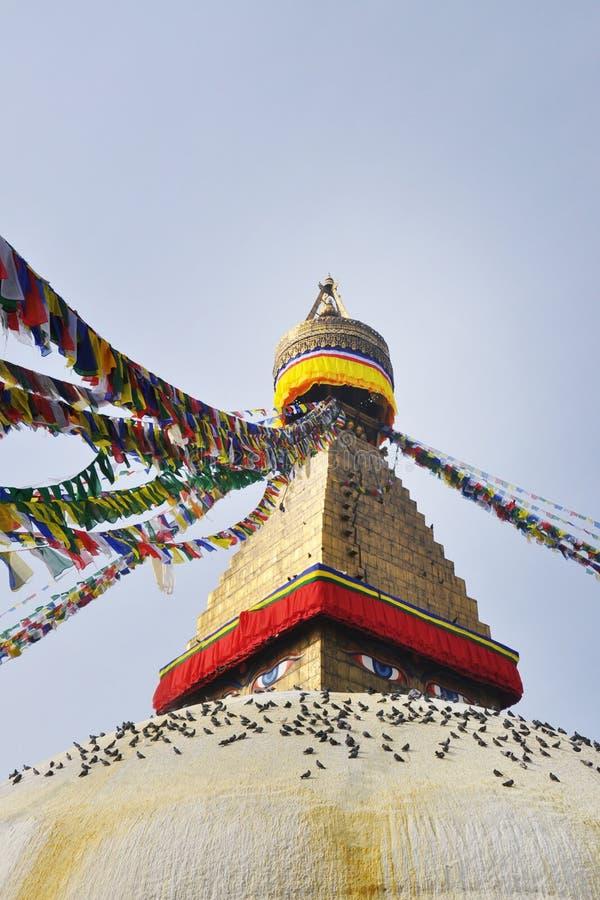 Stupa Katmandu Nepal stock afbeelding