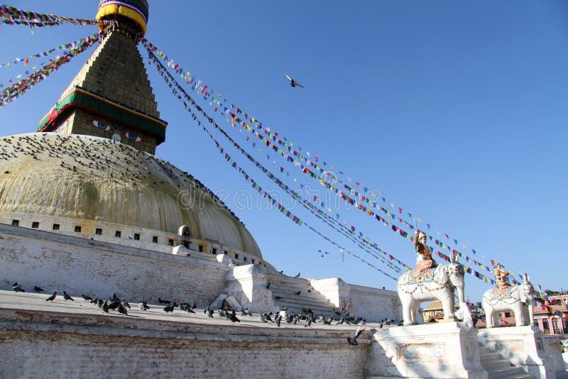 Stupa och elefanter royaltyfria foton