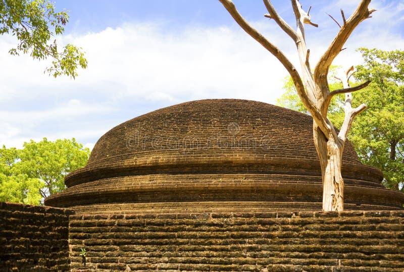 stupa sri parivena lanka крематорий alahana стоковая фотография