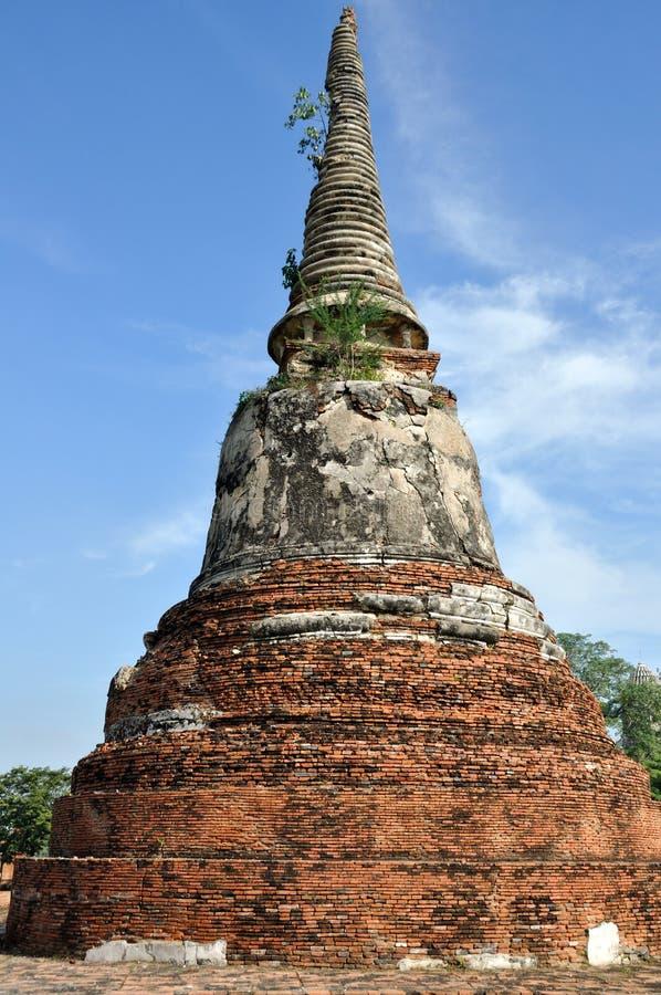 Download Stupa in Wat Phra Mahathat stock afbeelding. Afbeelding bestaande uit azië - 29503141