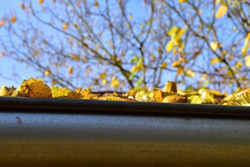 Stupade sidor i stuprännan till hösten arkivfoto