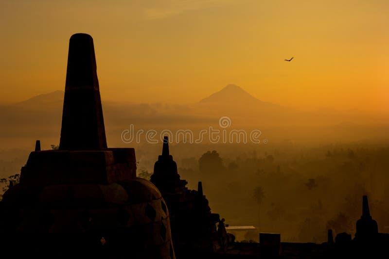 Stupas no templo de Borobudur fotografia de stock royalty free