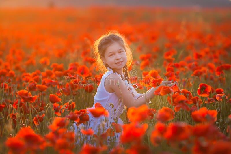Stupendo vicino sul ritratto di giovane ragazza romantica sveglia adorabile con il fiore del papavero a disposizione che posa sul fotografie stock libere da diritti