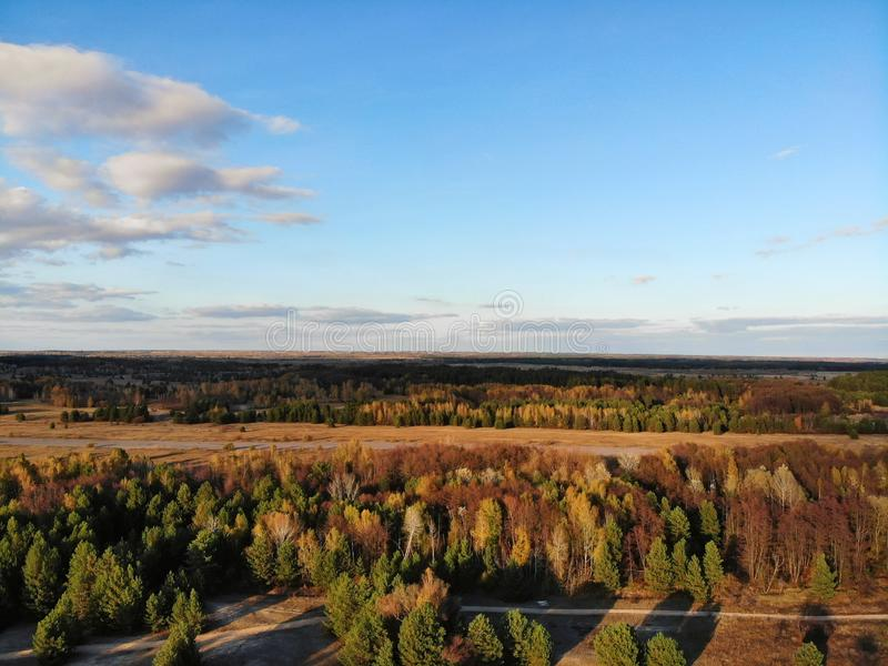 Stupendo vista aerea della foresta a colori autunnali fotografia stock libera da diritti