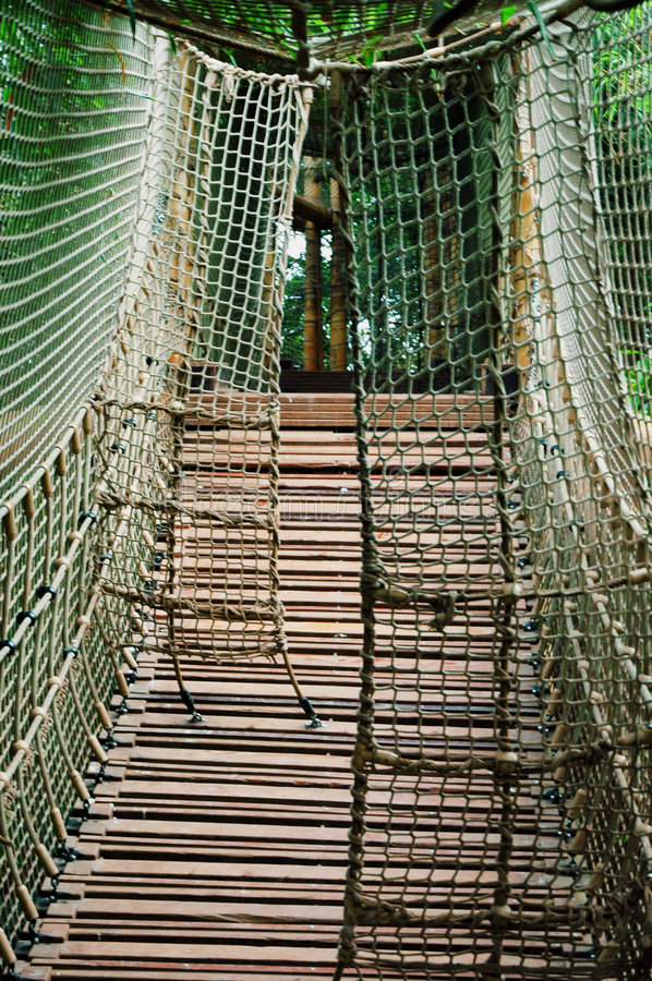 Download Sturdy Rope Bridge stock image. Image of ropebridge, ladder - 6654679
