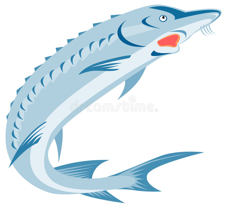 sturgeon fish stock vector illustration of retro sterlet 4982319 rh dreamstime com Sturgeon Point Productions Gulf Sturgeon Clip Art