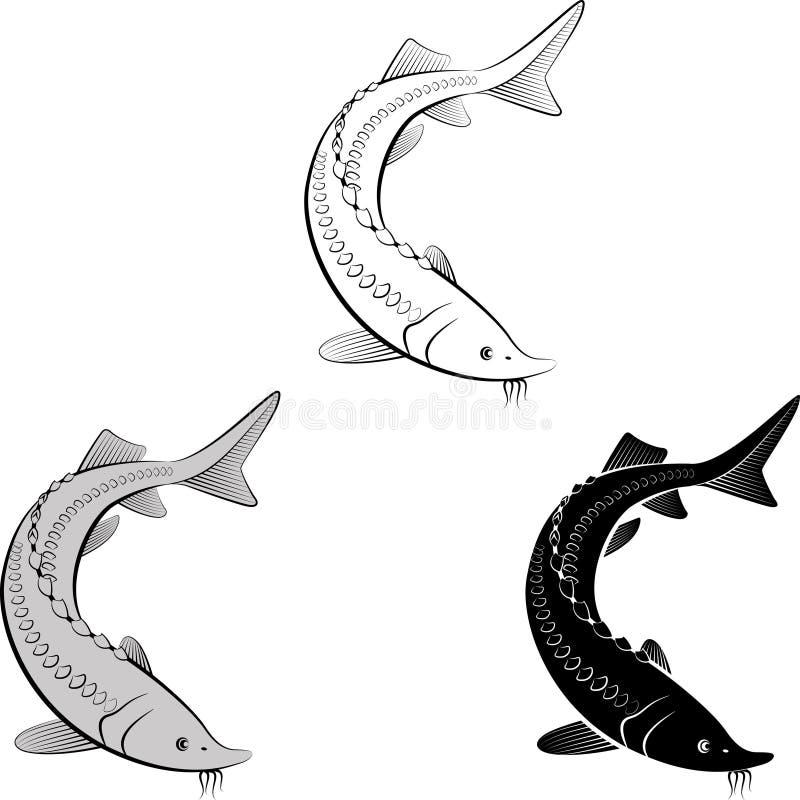sturgeon stock vector illustration of shape logo form 107397236 rh dreamstime com