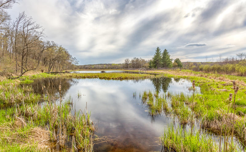 Sturm, der sich im Frühjahr über dem Sumpf bildet stockfotos